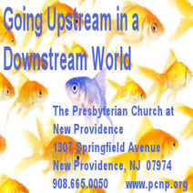 PCNP Going Upstream in a Downstream World